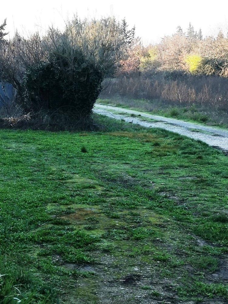 Aire camping-car à Monteux (84170) - Photo 2
